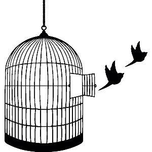 BCH_birdcage_black